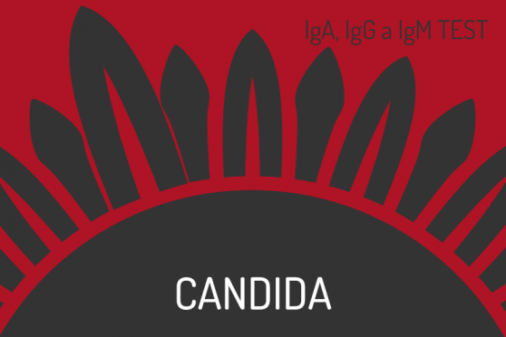 Candida-red2